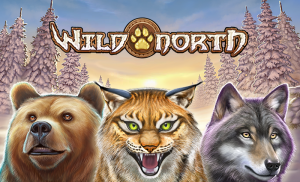 Wild North Play 'n Go online Wintergames Unibet casino 2021